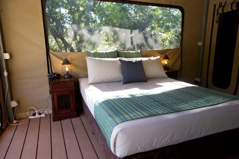 Rainforest Safari Tent interior