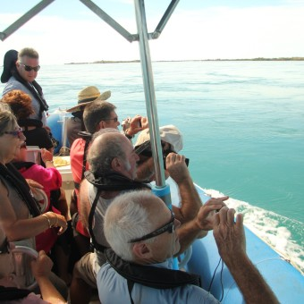 Enjoying our Sea Safaris