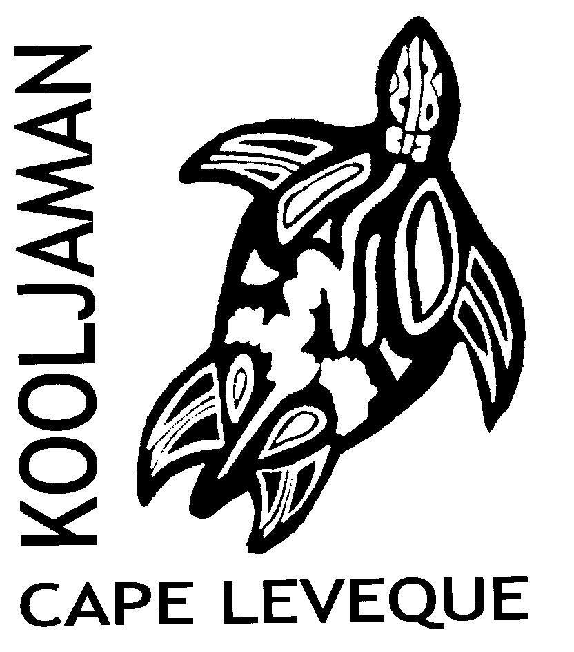 Turtle Logo 002