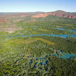 Mangroves in the Kimberley