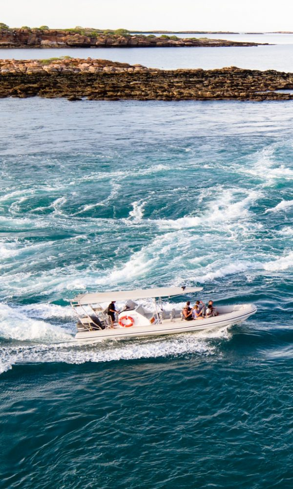 Sea safaris home page